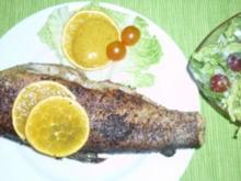Gebratene Forelle mit würziger Orangencreme - Rezept