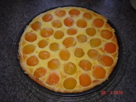 Kuchen + Torten : Schneller Aprikosentarte - Rezept