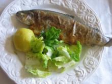 Forelle auf Müllerinart - Rezept