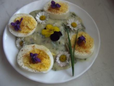 Eier auf Kräuter-Senf-Soße - Rezept