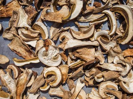 Pilze trocknen im Umluft-Herd - Rezept - Bild Nr. 2