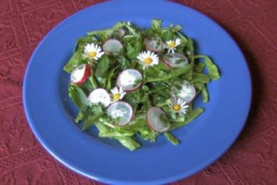 Salat mit Wildkräutern - Rezept