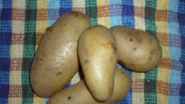 Kartoffel-Spargel-Gratin mit Thunfischsteak ,Kräutertomaten und Tête de Moine - Locken - Rezept - Bild Nr. 8