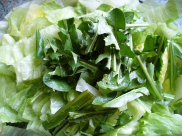 Salat frisch von der Wiese - Rezept - Bild Nr. 3