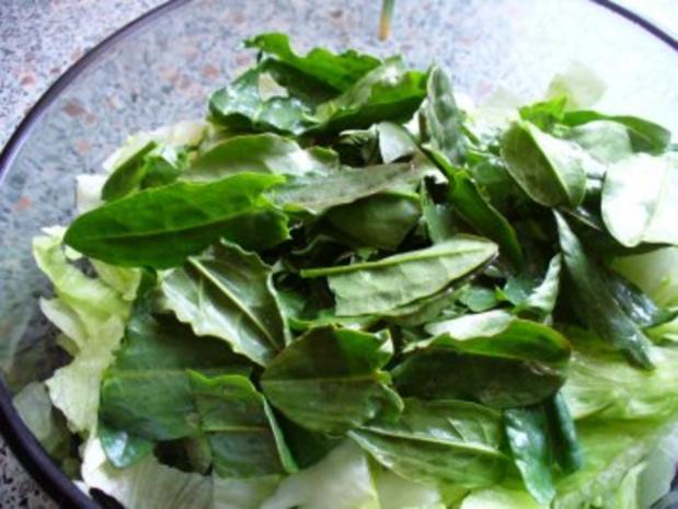Salat frisch von der Wiese - Rezept - Bild Nr. 4