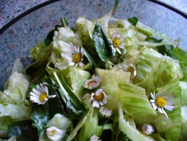 Salat frisch von der Wiese - Rezept - Bild Nr. 5