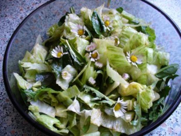Salat frisch von der Wiese - Rezept - Bild Nr. 6