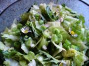 Salat frisch von der Wiese - Rezept