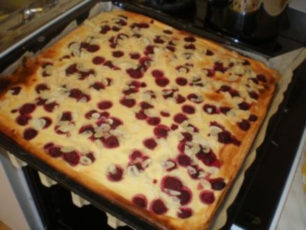 Himbeer-Quark-Kuchen vom Blech - Rezept