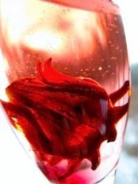 Aperitif: Wild Hibiskus trifft Sekt - Rezept