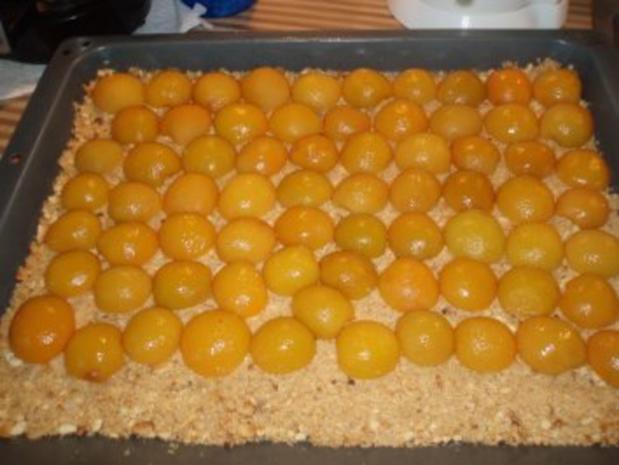 Kokos-Aprikosen- Blechkuchen - Rezept - Bild Nr. 4
