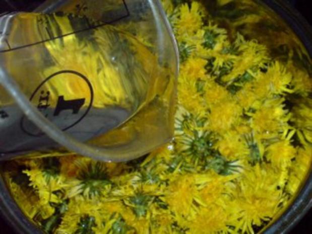 Löwenzahnblüten-Honig - Rezept - Bild Nr. 7