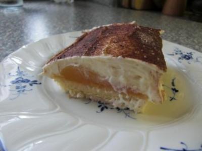 Aprikosen-Quark-Schnitten - Rezept