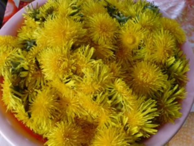 Löwenzahnblüten-Gelee - Rezept - Bild Nr. 2