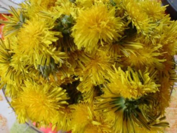 Löwenzahn-Honig 2 von den letzten Blüten - Rezept - Bild Nr. 2