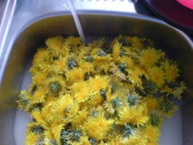 Löwenzahn-Honig 2 von den letzten Blüten - Rezept - Bild Nr. 4