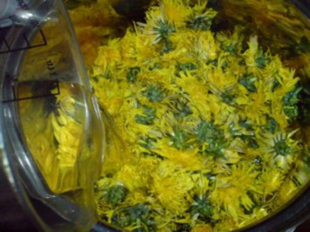 Löwenzahn-Honig 2 von den letzten Blüten - Rezept - Bild Nr. 5