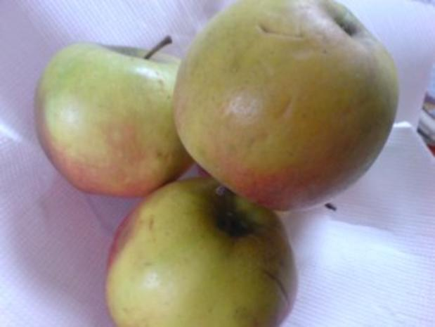 Apfel-Rhabarber-Kompott mit Vanillepudding - Rezept - Bild Nr. 4