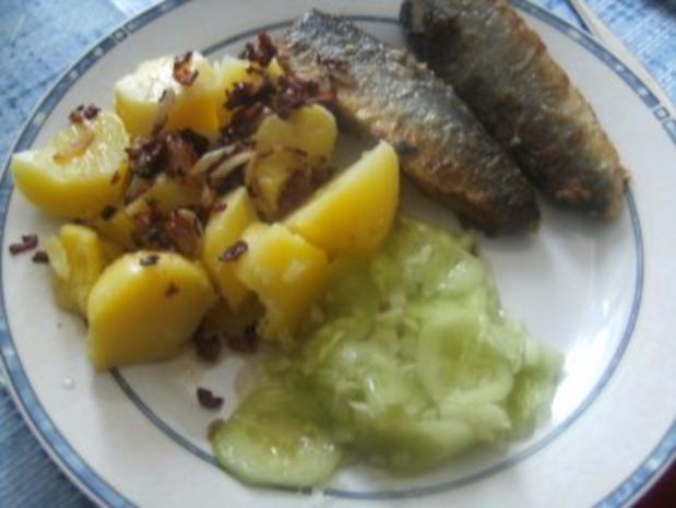 Grüne Heringe  gebraten mit Salzkartoffeln und Gurkensalat - Rezept - Bild Nr. 12
