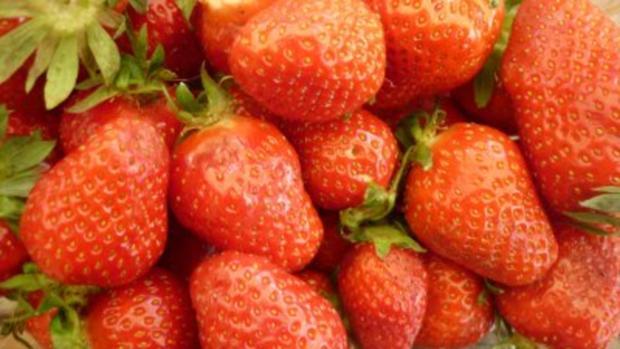 Beschwipste Erdbeermarmelade - Rezept - Bild Nr. 6