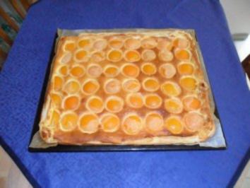 Aprikosenkuchen vom Blech (Aprikosentarte) - Rezept