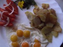 Wachteleier an rohen Bratkartoffeln - Rezept