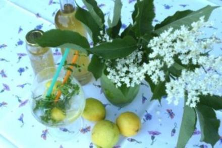 Holunderblüten Sirup - Rezept