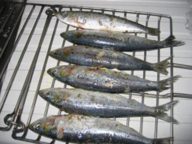 Marinierte Sardinen vom Grill - Rezept - Bild Nr. 2