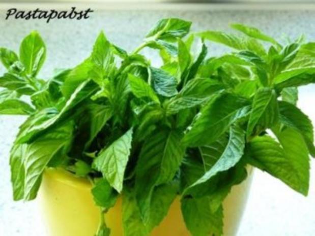 Zitronen-Ingwer-Minze-Sirup - Rezept - Bild Nr. 3