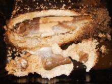 Forelle in der Salzkruste - Rezept