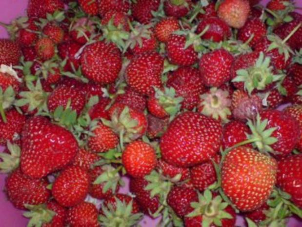 Erdbeer-Joghurt-Torte - Rezept - Bild Nr. 5