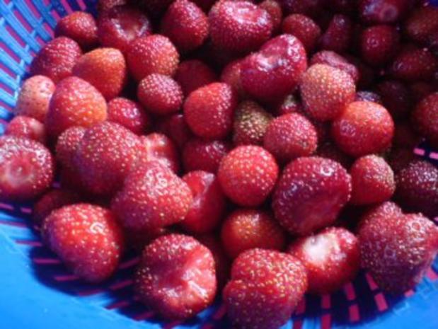 Erdbeer-Joghurt-Torte - Rezept - Bild Nr. 6