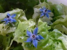 Kopfsalat mit Borretsch - Rezept