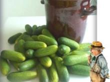 Eingemachtes:  Salz - Dill - Gurken - Rezept
