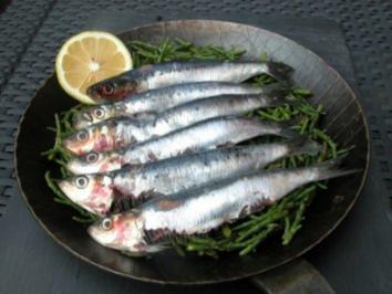 Sardinen aus der Pfanne serviert - Rezept