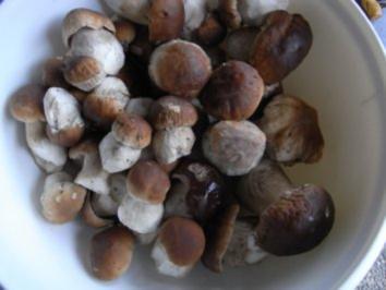 Kapplersuppe aus Oma Schatzkästchen - Rezept
