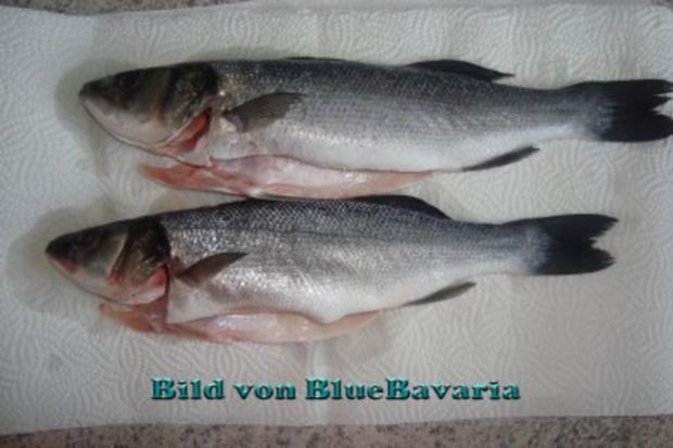 Fischgerichte: Wolfsbarsch gebraten - Rezept - Bild Nr. 2