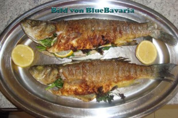 Fischgerichte: Wolfsbarsch gebraten - Rezept - Bild Nr. 3