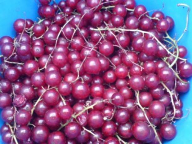 3-Frucht-Marmelade - Rezept - Bild Nr. 3