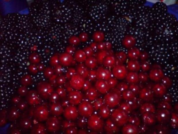 Johannisbeer-Brombeer-Marmelade - Rezept - Bild Nr. 3