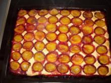 Mohn-Zwetschgenkuchen - Rezept