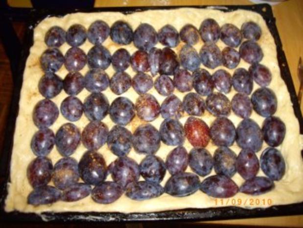 Pflaumenkuchen mit Puddingdecke und Hefeteigboden (nach Mama's Rezept !!!) - Rezept - Bild Nr. 4
