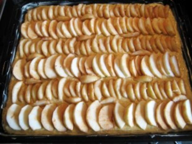 Apfel Und Birnenkuchen Mit Streusel Vom Blech Rezept Kochbar De