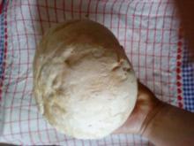 Hauptgericht: ein Pilz für drei ... reicht aber auch für drei Tage!!!! - Rezept