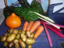 Eintopf: Mangold - Karotten - Kürbistopf - Rezept