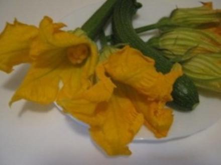 Frittata con fiori di zucchine - Rezept