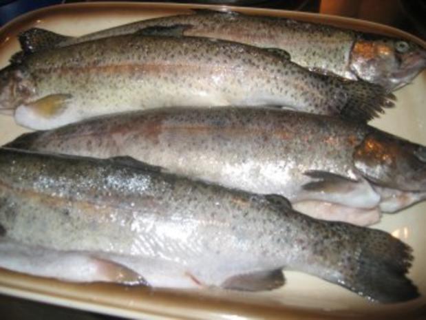 Fisch: Gefüllte Mandel - Forellen - Rezept - Bild Nr. 6