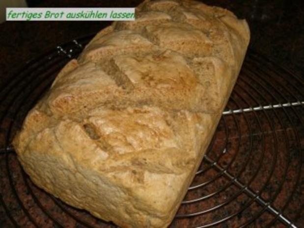 Brot: ROGGEN - WEIZENMISCH - Rezept - Bild Nr. 9