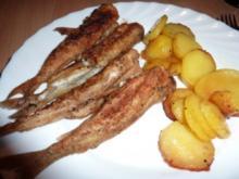 Fisch: Stint gebraten und eingelegt - Rezept