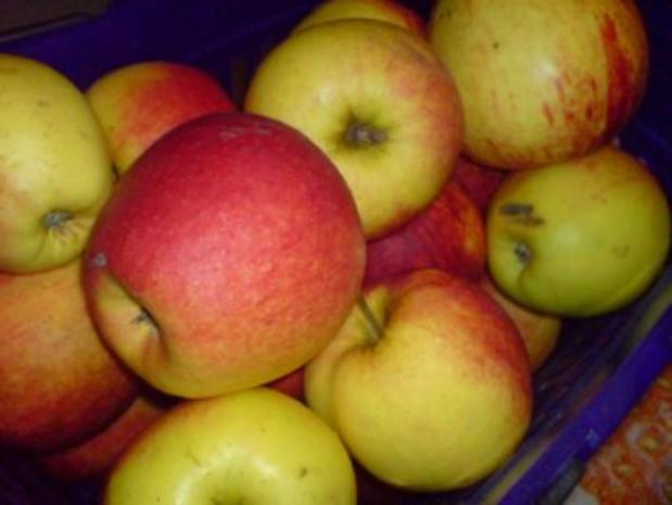 Weihnachtlicher Apfelkuchen - Rezept - Bild Nr. 4